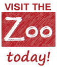 Visit a zoo